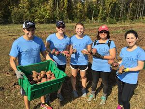 Photo of five NCB Employees volunteering in a garden